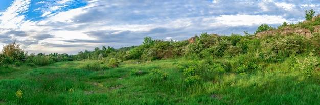 La bellezza della natura a migiya, ucraina Foto Premium
