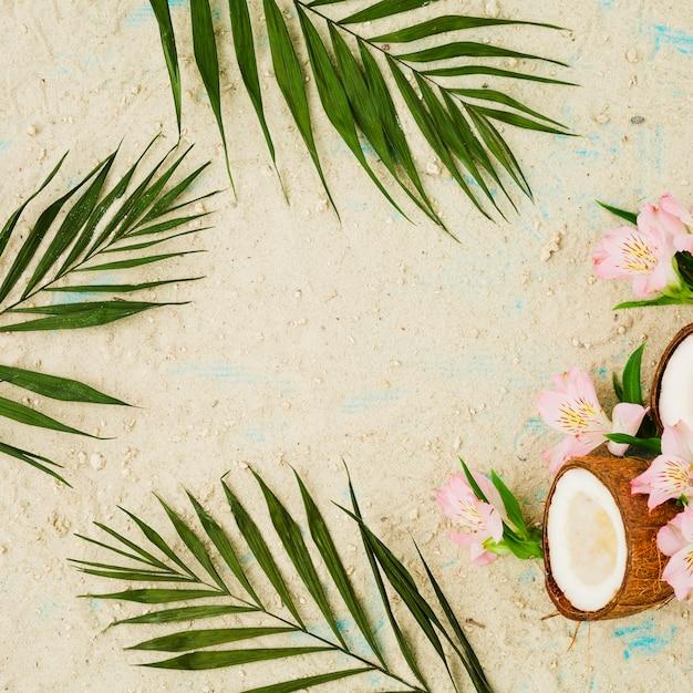 La disposizione delle foglie verdi si avvicina ai fiori ed alla noce di cocco fra la sabbia Foto Gratuite