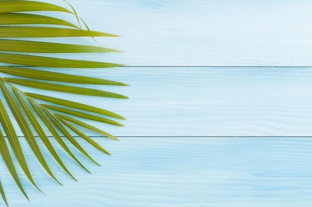 La disposizione piana della noce di cocco va sul pavimento di legno blu, sulla vista superiore e sullo spazio della copia, concetto dell'estate Foto Premium