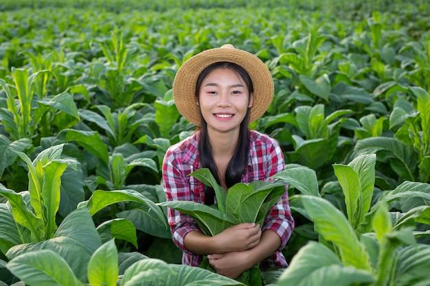 La donna dell'agricoltore osserva il tabacco nel campo. Foto Gratuite