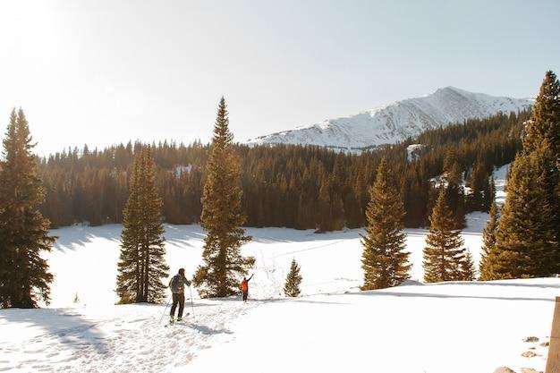 La gente che cammina su una collina innevata vicino agli alberi con una montagna innevata e un cielo sereno Foto Gratuite