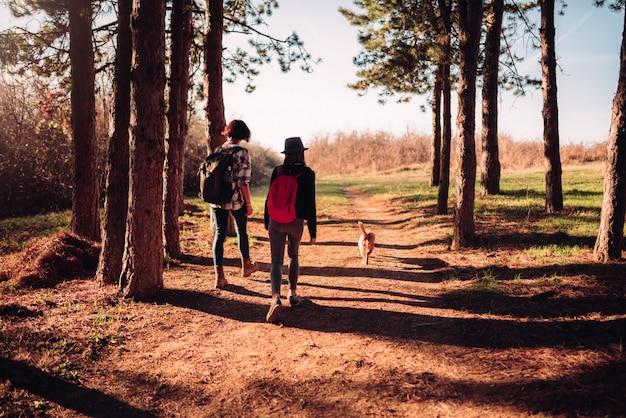 La madre e la figlia che fanno un'escursione con il cane sull'abetaia trascinano Foto Premium