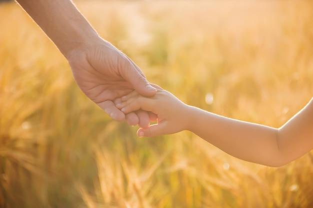 La mano del bambino e del padre sul campo di grano. Foto Premium