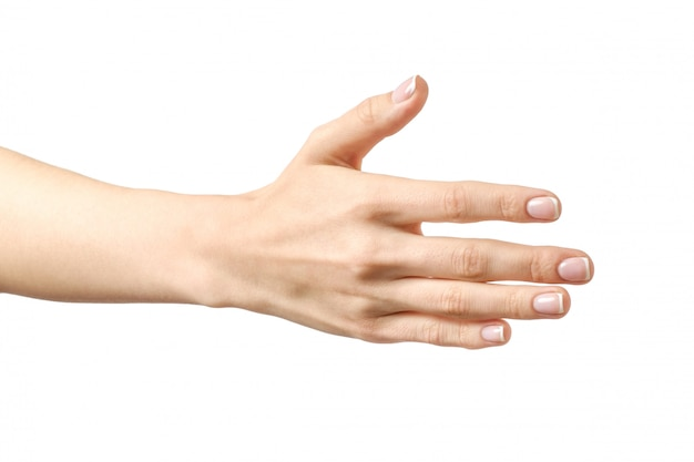 La mano della donna che è disposta a fare un accordo Foto Premium