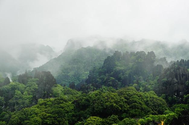 La nebbia copre gli alberi distanti su un lato della montagna calcarea, laos Foto Premium