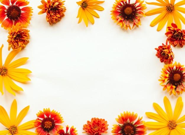 La pagina dell'autunno arancio, giallo e rosso fiorisce su un fondo bianco con copyspace Foto Premium
