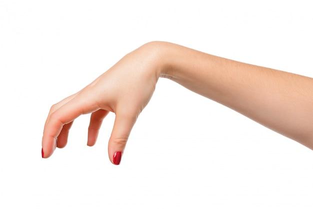 La posa della mano gradisce selezionare qualcosa di isolato su bianco Foto Premium