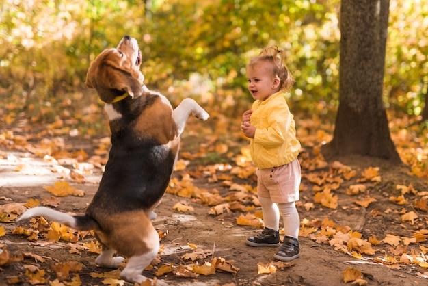 La ragazza che sta davanti al suo cane di animale domestico sta sulla sua gamba posteriore in foresta Foto Gratuite