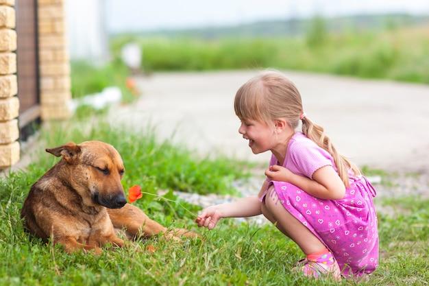 La ragazza felice mostra il fiore rosso ad un cane Foto Premium