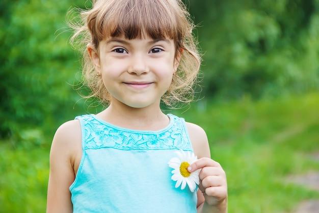 La ragazza tiene in mano fiori di camomilla. messa a fuoco selettiva Foto Premium