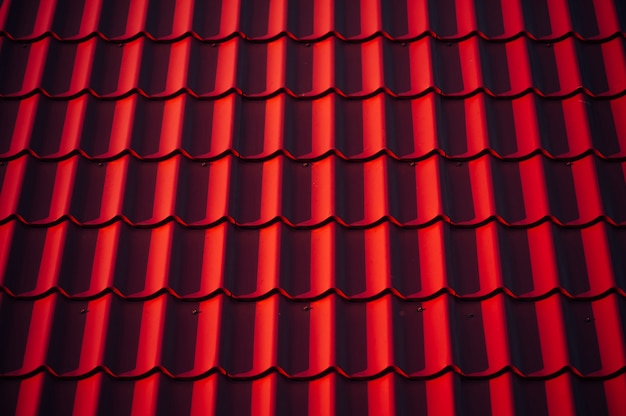La trama del tetto. Foto Premium
