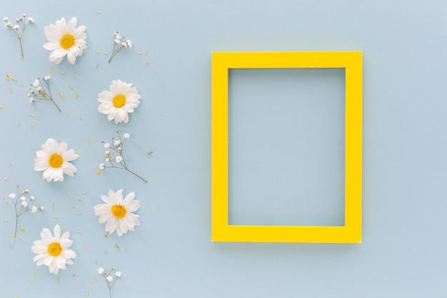 La vista dell'angolo alto dei fiori e del polline della margherita bianca con la struttura in bianco del pensionante giallo ha sistemato su fondo blu Foto Gratuite