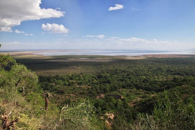 La vista sul parco nazionale di ngorongoro, tanzania Foto Premium