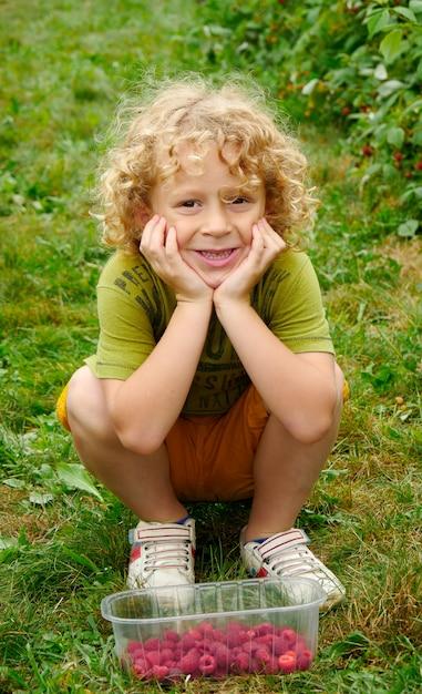 Lamponi biondi di raccolto del piccolo ragazzo nel giardino Foto Premium