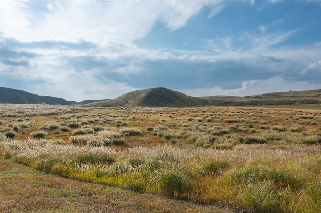 Lanscape verde con sfondo di montagna aso, kusasenri, aso, kumamoto, kyushu, giappone Foto Premium