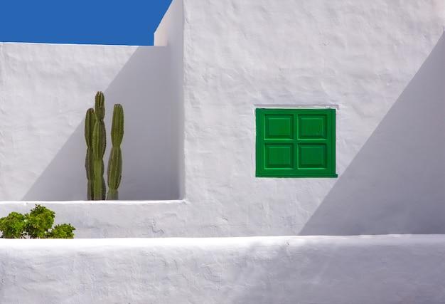 Lanzarote san bartolome tipica casa di cactus bianco Foto Premium