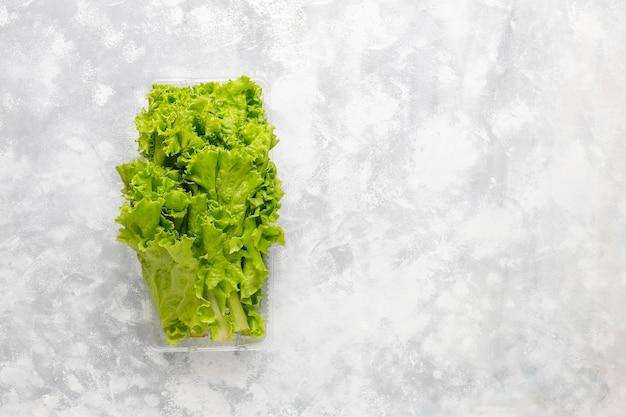 Lattuga verde fresca in scatole di plastica su calcestruzzo grigio Foto Gratuite