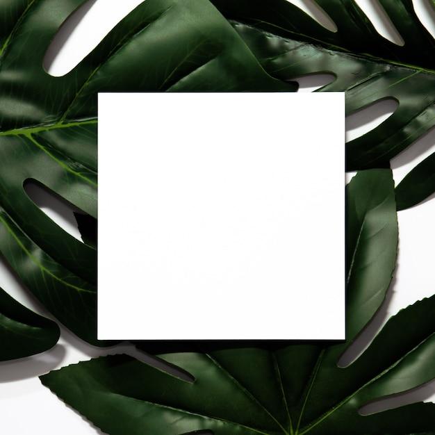 Layout creativo fatto di foglie tropicali con cornice di carta bianca vuota. Foto Premium
