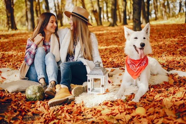 Le belle ragazze si divertono in un parco in autunno Foto Gratuite