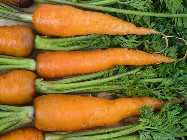 Le carote nutrono le cellule della pelle Foto Premium