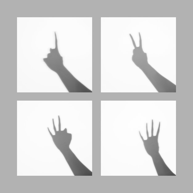 Le dita da uno a quattro dita contano l'ombra della struttura dei segni isolata sopra fondo bianco Foto Gratuite