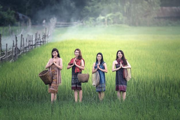 Le donne tailandesi danno il benvenuto a sawasdee al giacimento del riso, campagna della tailandia Foto Premium