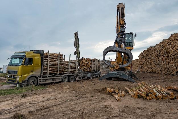 Le gru sui tronchi del territorio di magazzino vengono scaricate dal camion. Foto Premium