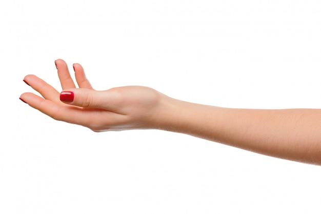 Le mani prendono il gesto del palmo aperto per tenere, isolato Foto Premium