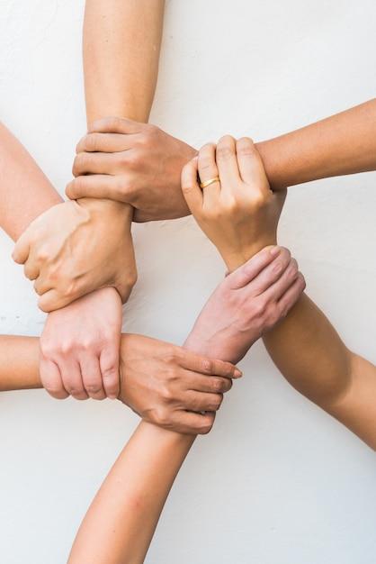 Le mani si sono unite insieme nel lavoro di squadra su fondo bianco. Foto Premium