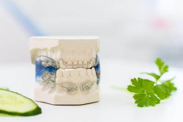 Le mascelle in ceramica con fiocco si trovano con cetriolo affettato Foto Premium