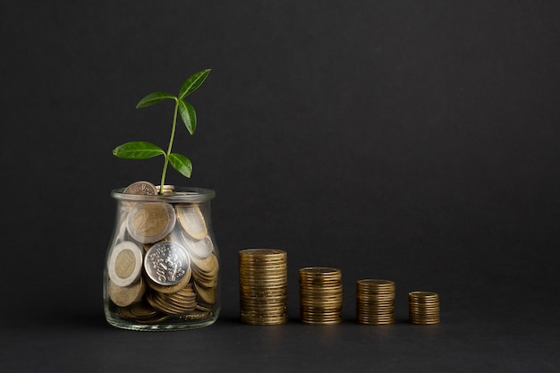 Le pile di monete si avvicinano al barattolo della moneta con la pianta Foto Gratuite
