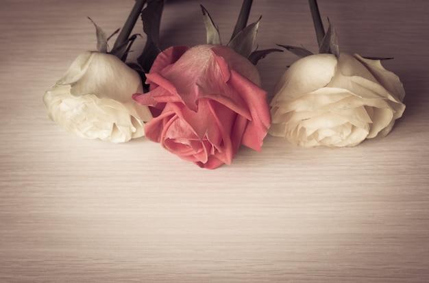 Le rose d'annata si chiudono su Foto Premium