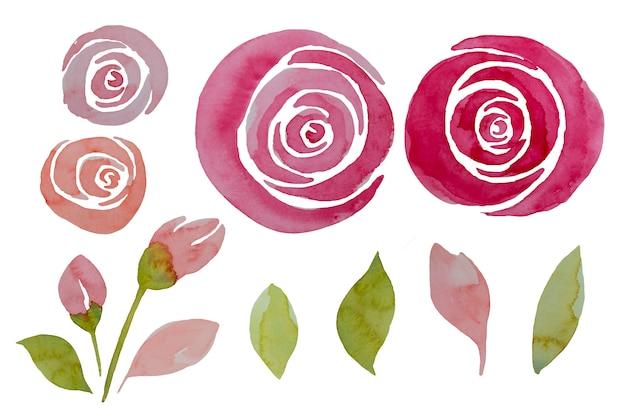 Le rose e le foglie rosa dell'acquerello hanno messo, illustrazione. eleganti fiori dipinti a mano. Foto Premium