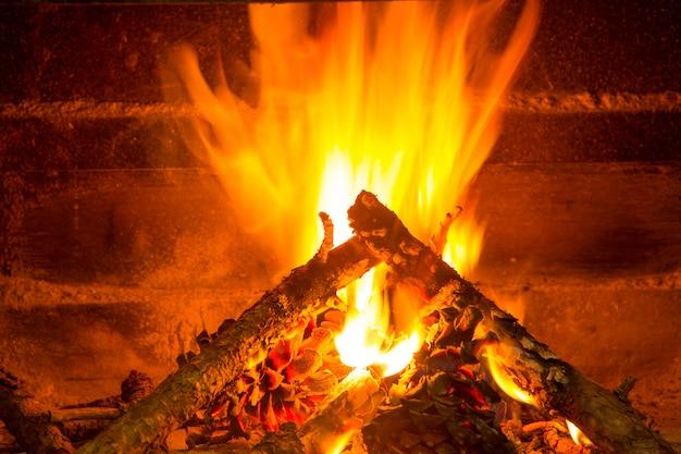 Legna da ardere ardente in camino con pigne Foto Premium
