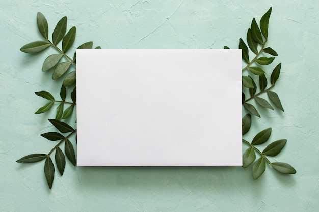 Libro bianco in bianco sulle foglie verdi sopra fondo strutturato Foto Gratuite