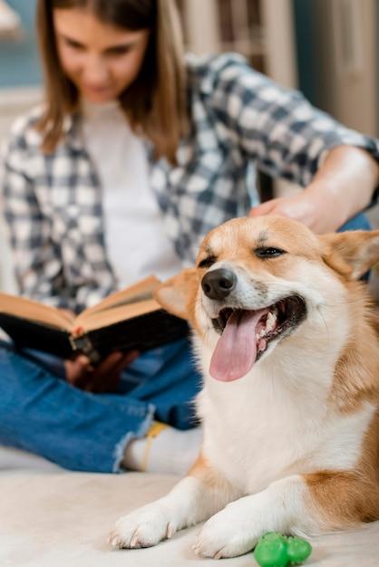 Libro di lettura felice della donna e del cane sullo strato Foto Gratuite