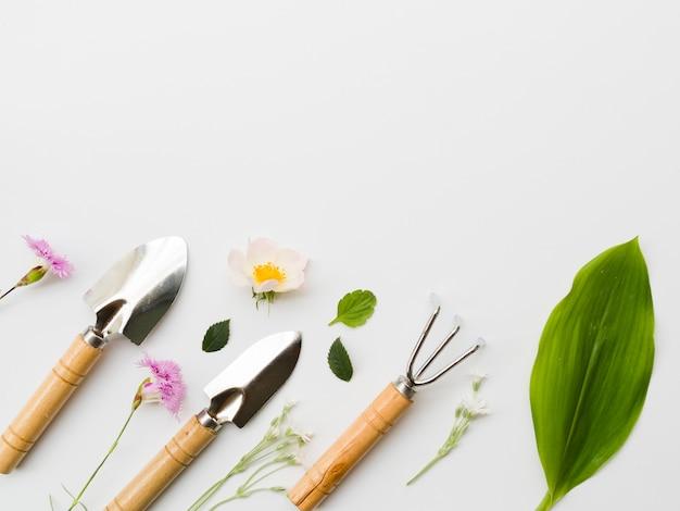 Linea di attrezzi da giardinaggio vista dall'alto con piante Foto Gratuite