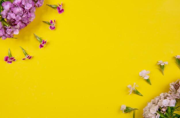 Lo spazio della copia di vista superiore fiorisce bianco e rosa su un fondo giallo Foto Gratuite