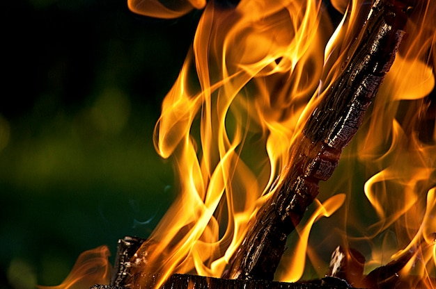 Log di combustione nel fuoco, fiamme arancione brillante Foto Premium