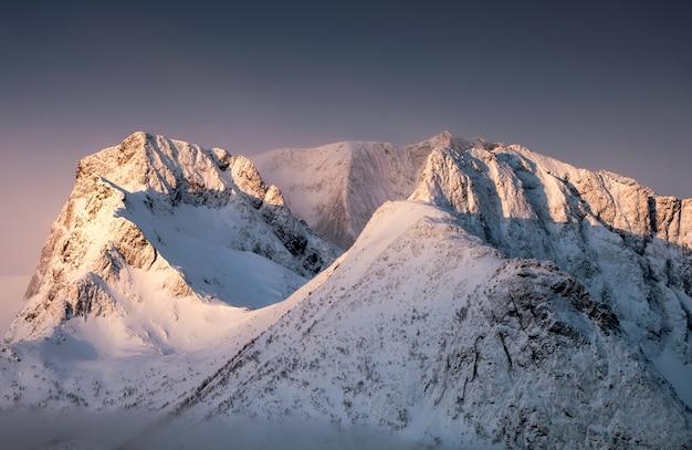 Luce dorata sulla collina del picco di neve in mattinata Foto Premium