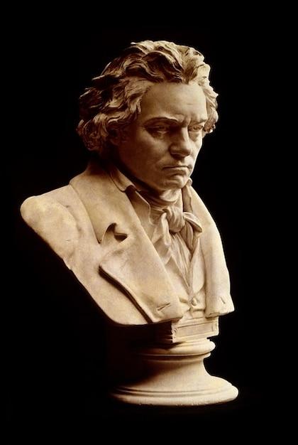 Ludwig van testa compositore busto uomo beethoven Foto Gratuite
