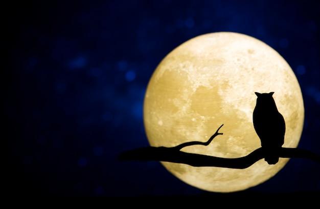 Luna piena nel cielo notturno Foto Gratuite
