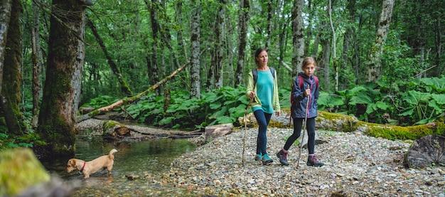 Madre e figlia con un cane che fa un'escursione nella foresta Foto Premium