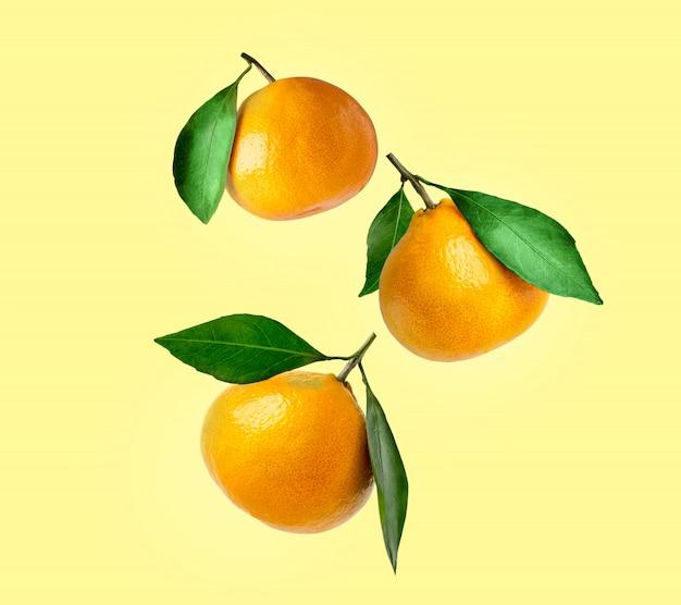 Mandarini di diverse forme con foglia Foto Premium