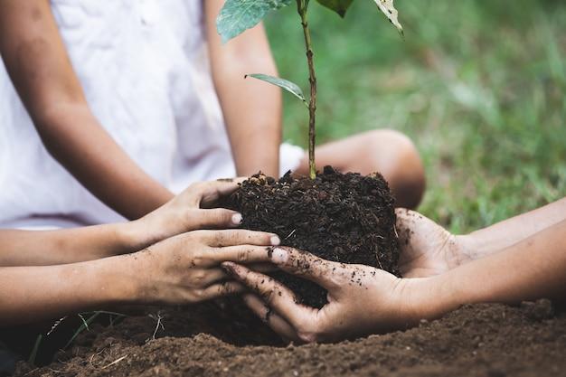 Mani del genitore e dei bambini che piantano insieme giovane albero sul suolo nero Foto Premium