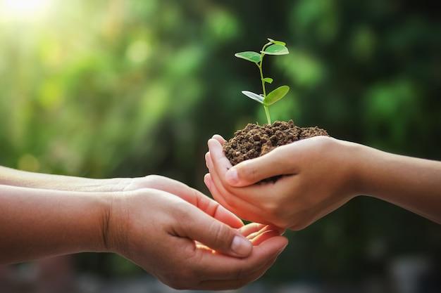 Mano della madre e dei bambini che tengono giovane albero per la piantatura nel giorno di terra Foto Premium