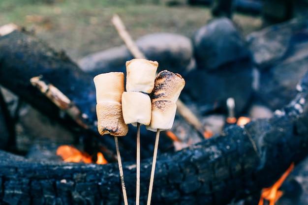 Marshmallow su un bastone sopra il fuoco cucinare marshmallow in fiamme Foto Premium