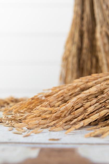 Mazzo di spighe di riso Foto Premium