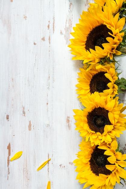 Mazzo giallo del girasole su fondo rustico bianco Foto Premium
