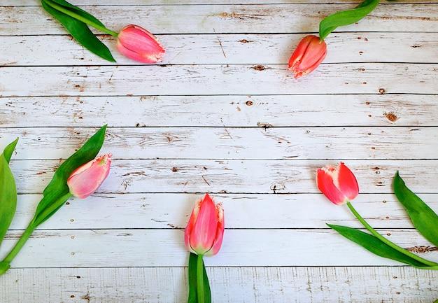 Mazzo rosa dei tulipani sulle plance bianche di legno Foto Premium